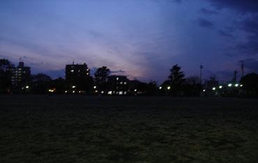 2008019